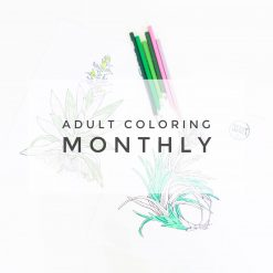 adult coloring monthly subscription box pop shop america web