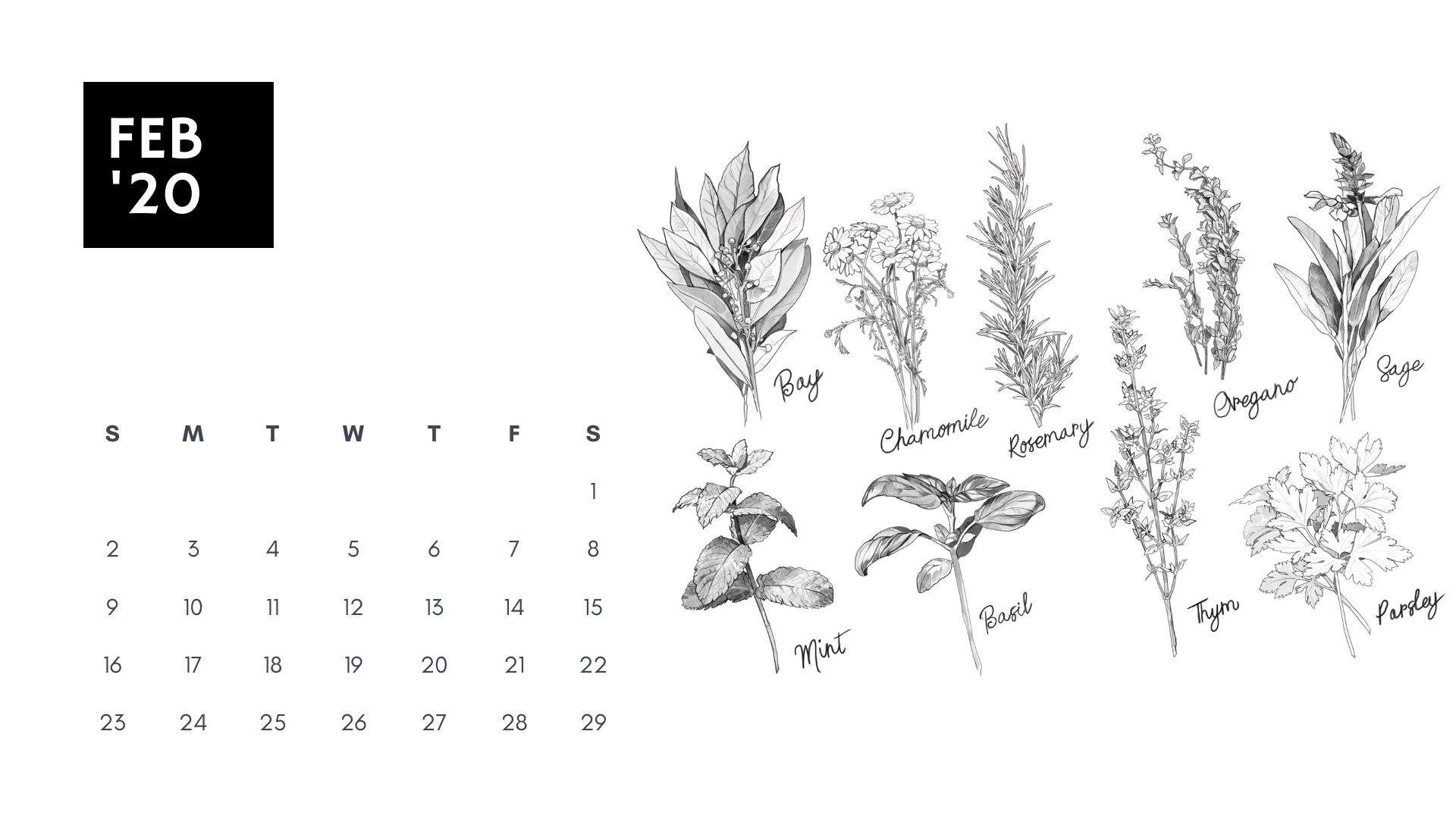 february 2020 coloring book calendar