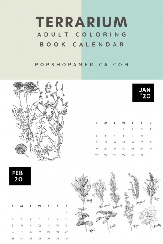 free adult coloring book calendar pop shop america
