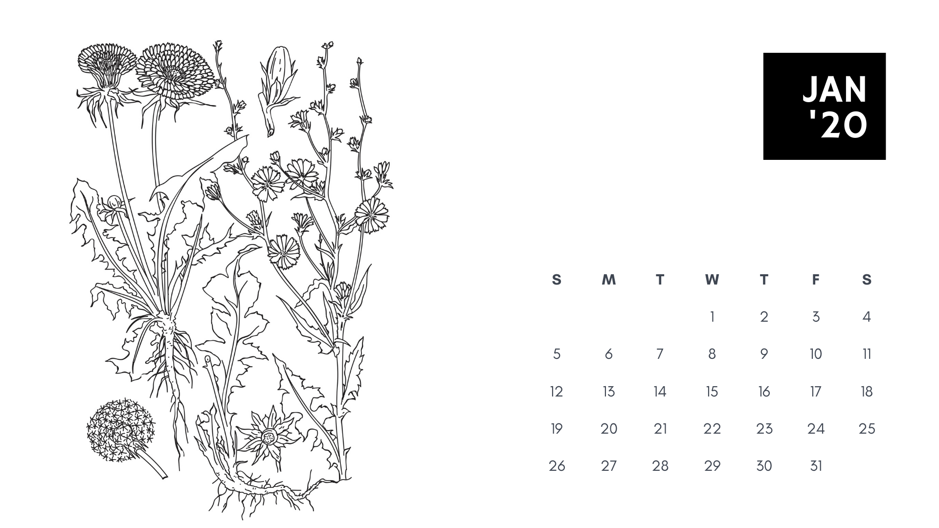 january 2020 coloring book calendar