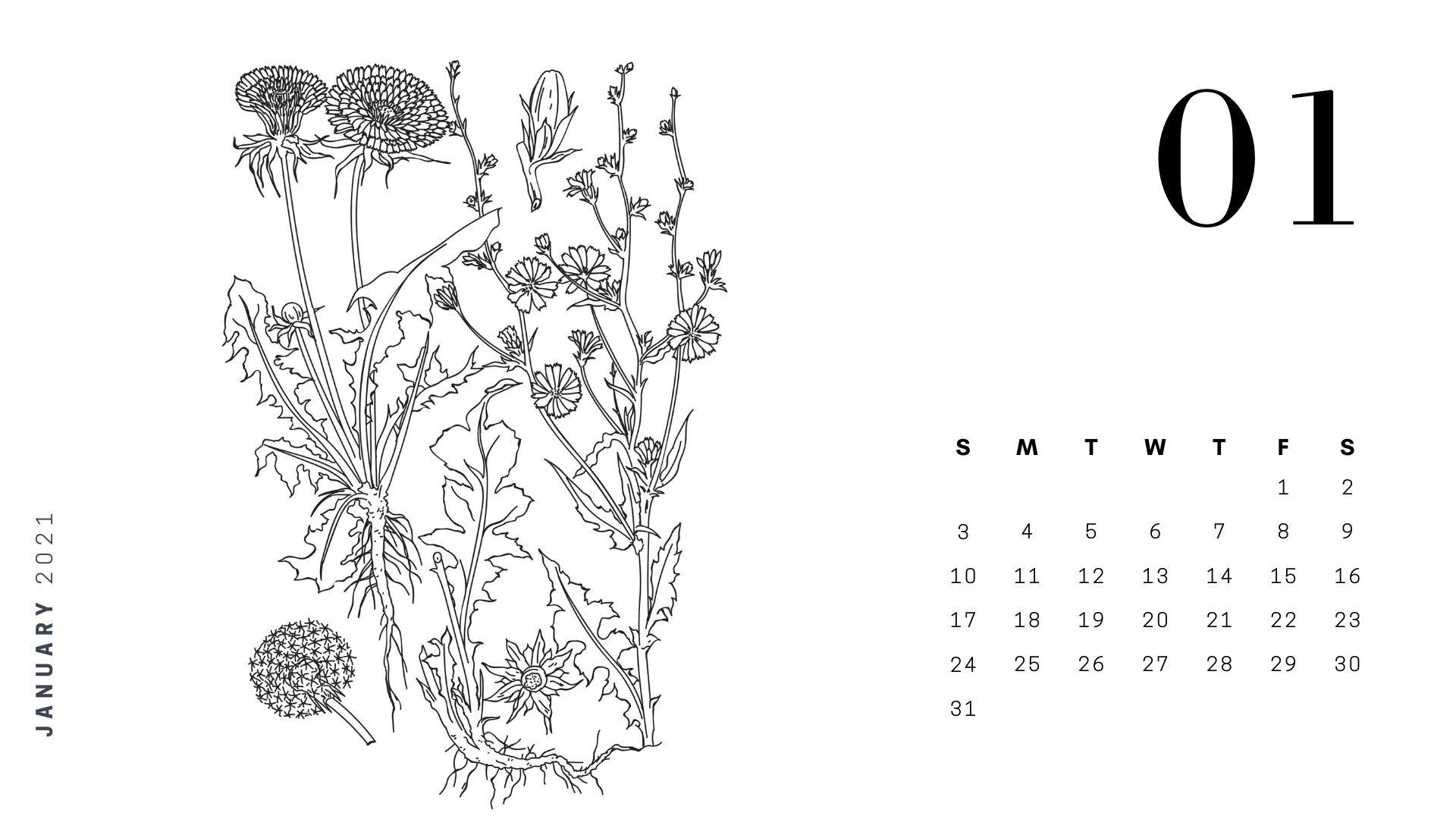 january adult coloring calendar 2021