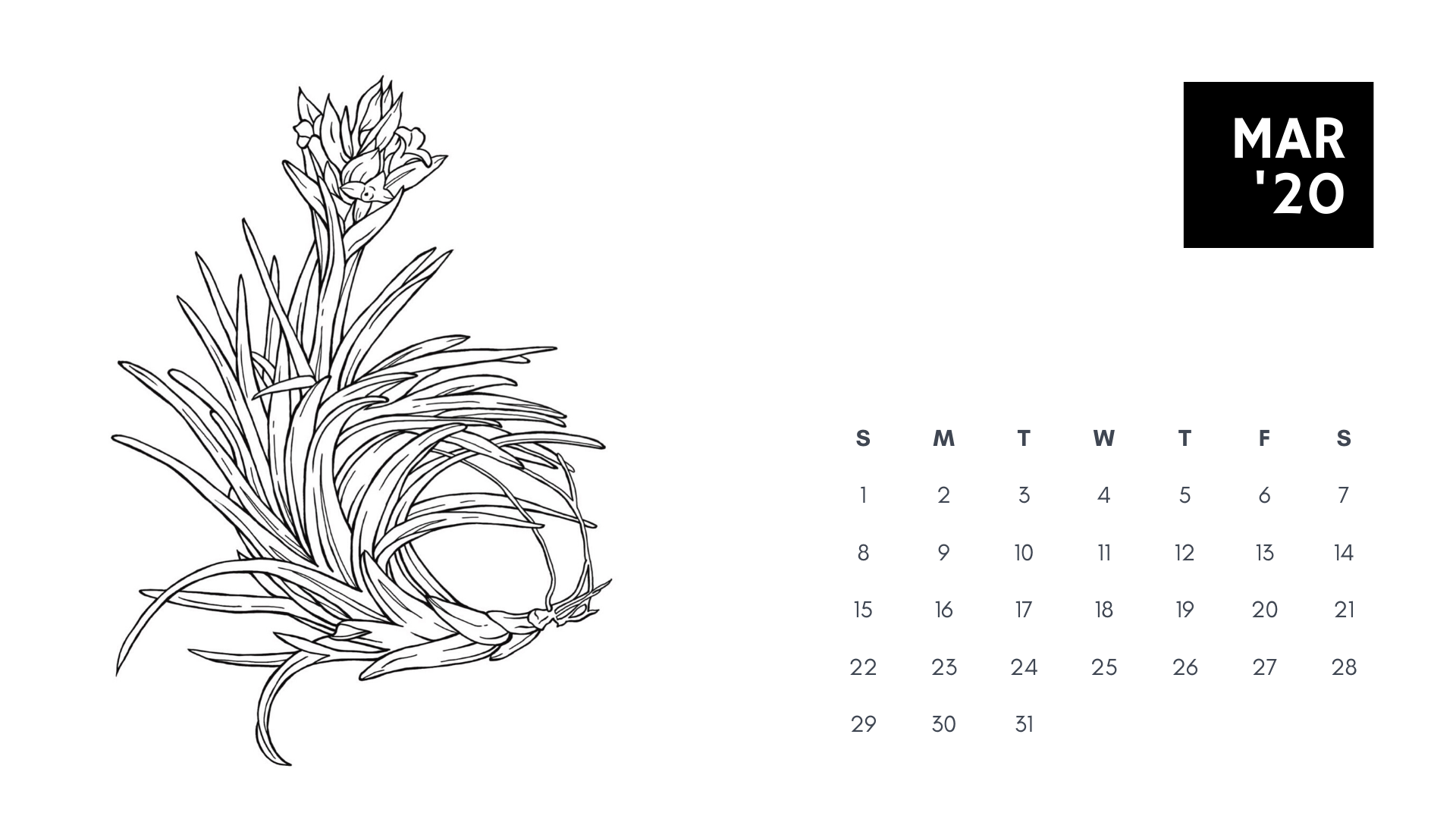 march 2020 coloring book calendar