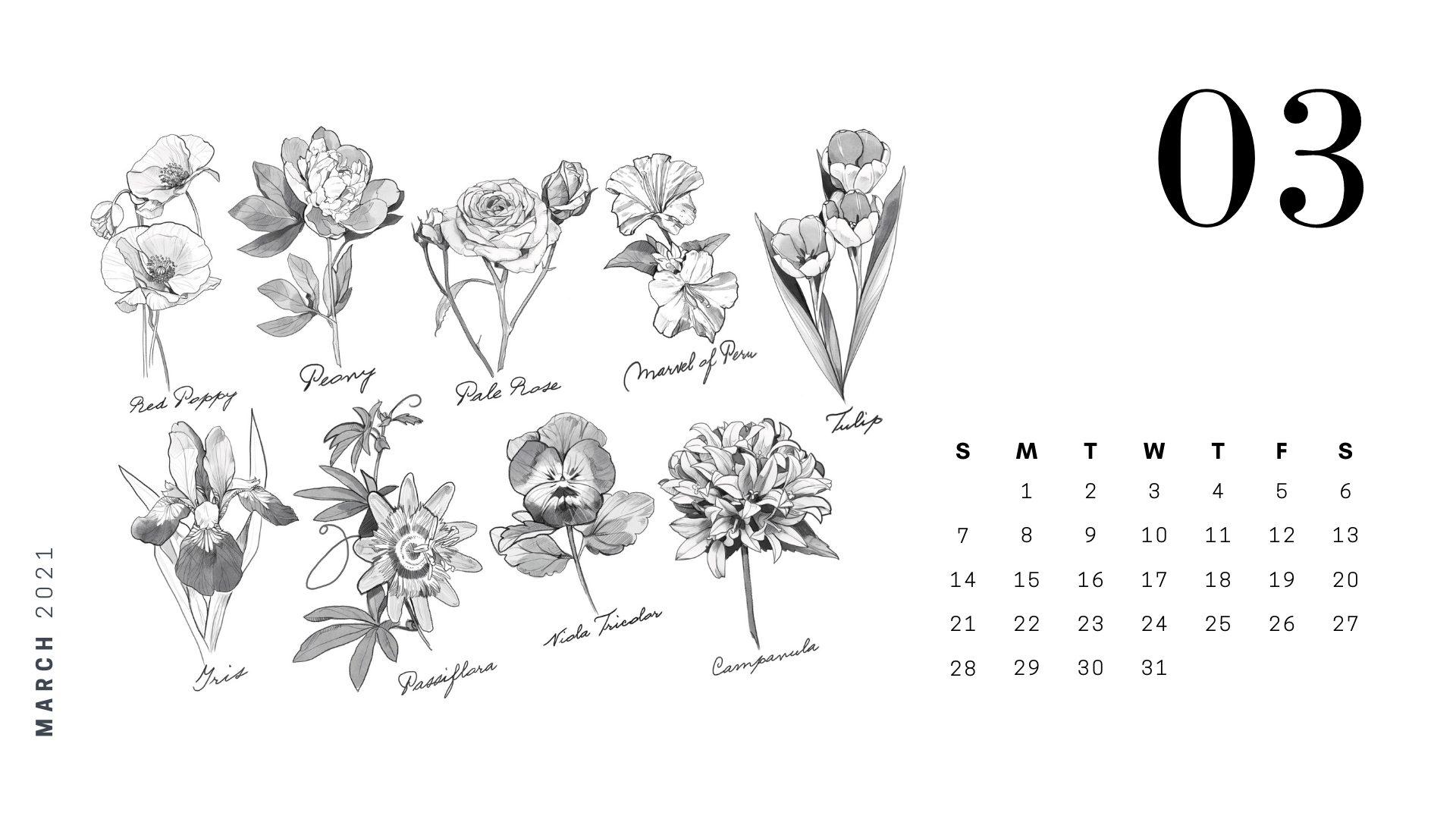march 2021 succulent coloring calendar pop shop america