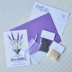 diy lavender sachet mini craft kit pop shop america