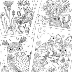 inside adult coloring book desert dreams pop shop america