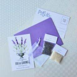 miniature lavender sachet craft kit pop shop america