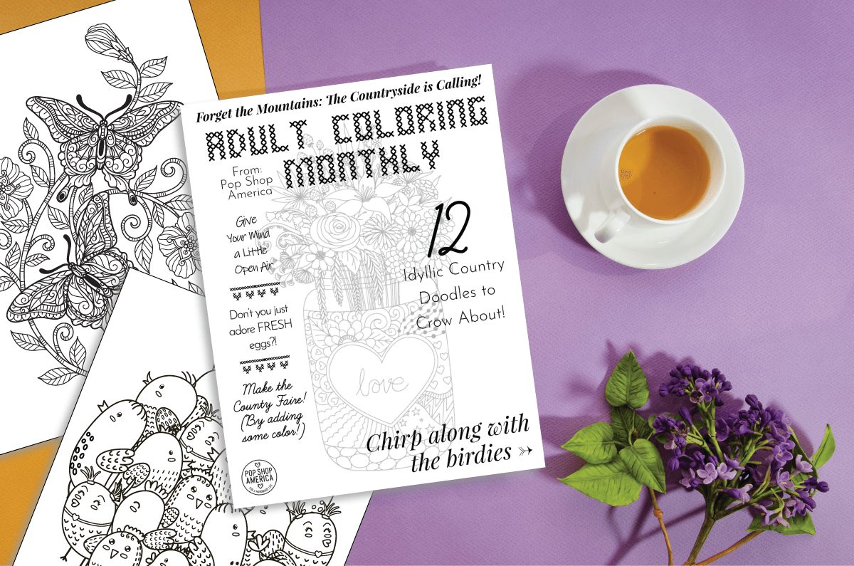 country doodle adult coloring monthly sub box pop shop america