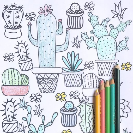 succulent-adult-coloring-pages-hero-pop-shop-america_square