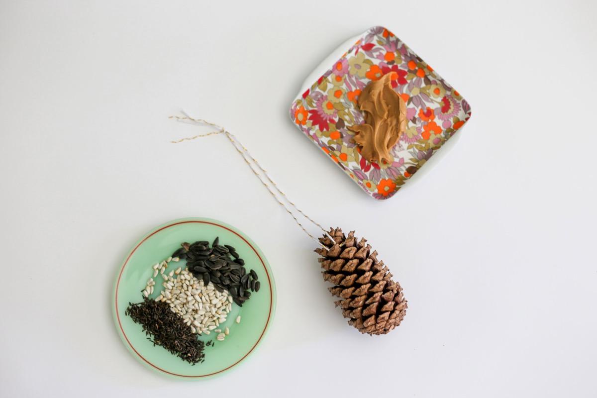 bird seed peanut butter and a pine cone bird feeder