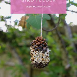 easy diy pine cone bird feeder pop shop america