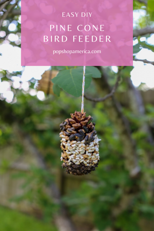 easy diy pine cone bird feeder pop shop america