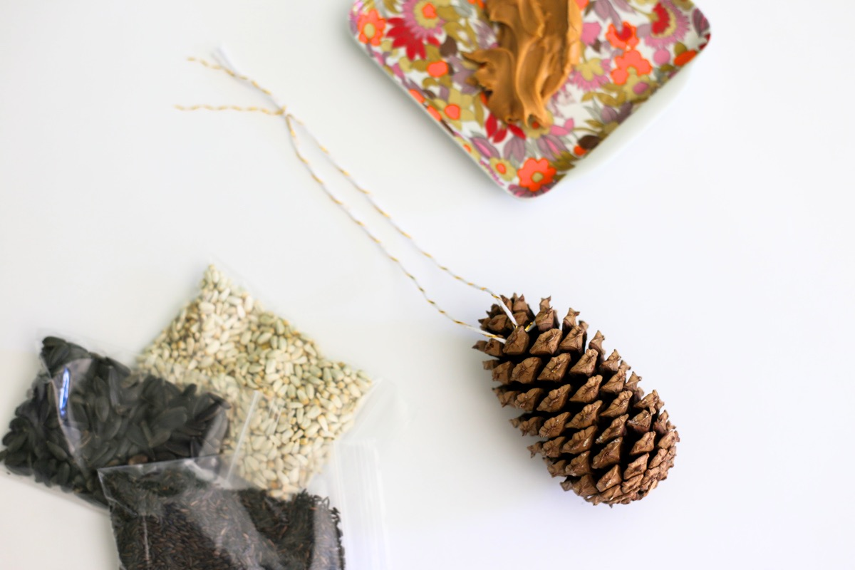 supplies to make an easy pine cone bird feeder