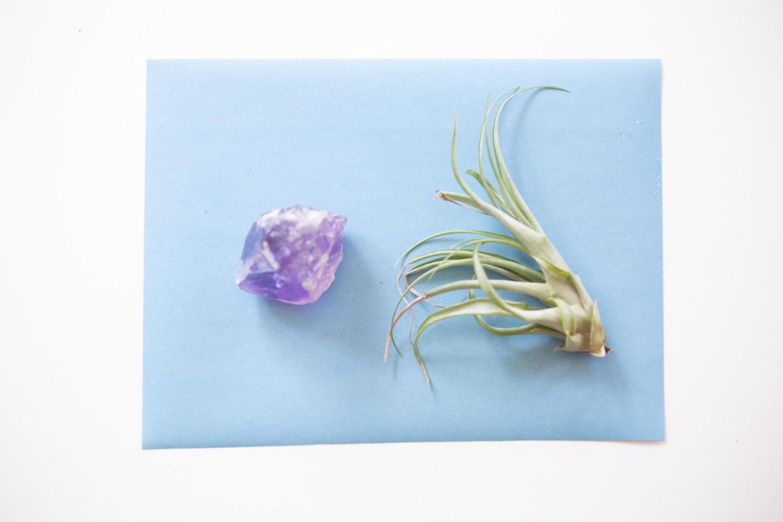 how to make sun print cyanotypes diy pop shop america