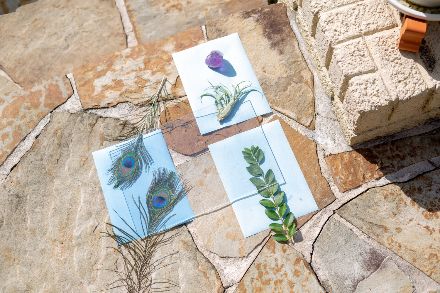 place cyanotypes in the sun with acrylic sheet pop shop america