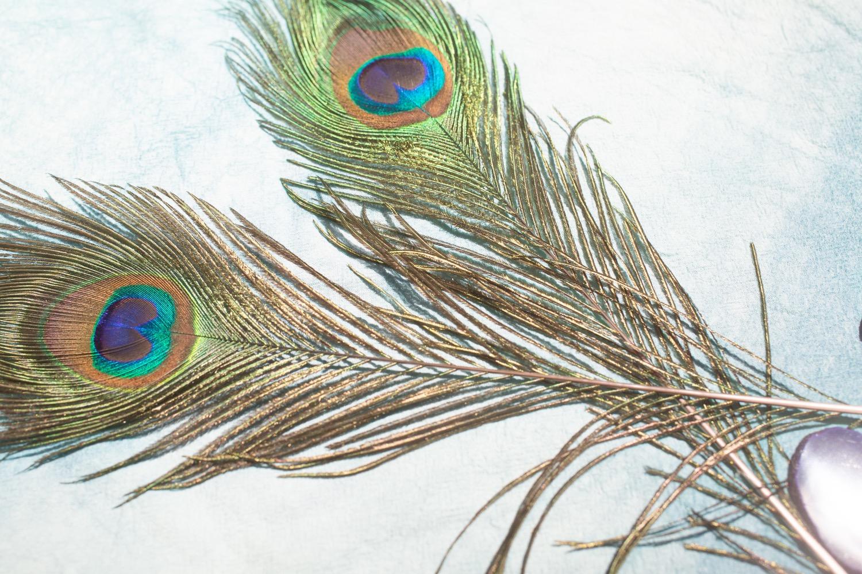 set the cyanotype napkins in the sun diy tutorial