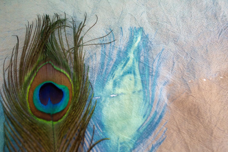 what exposed cyanotypes look like pop shop america
