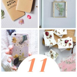 11 gorgeous pressed flower craft ideas pop shop america