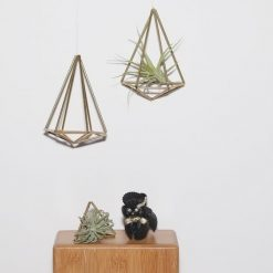 diy-kit-himmeli-air-plant-holder-craft-kit_square
