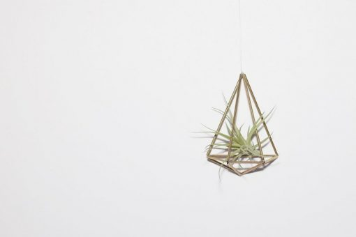 single diy himmeli air plant holder
