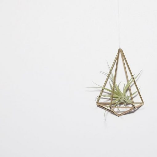 single-diy-himmeli-air-plant-holder_square