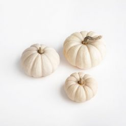 white-faux-pumpkin-for-diy-kit_square