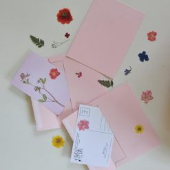 pressed flower postcards flatlay