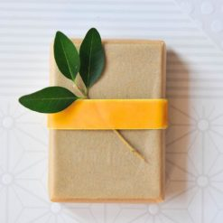 parchment-and-ribbon-wrapped-soap-diy-with-leaves_square