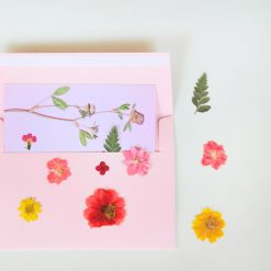 pressed-flower-postcard-from-pop-shop-america_square