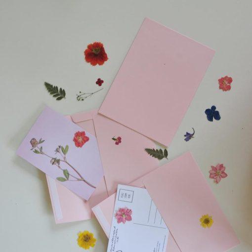 pressed-flower-postcards-flatlay_square