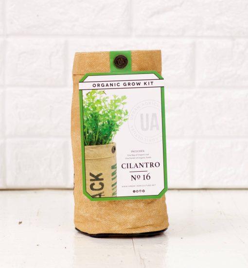cilantro herb garden growing kit diy pop shop america