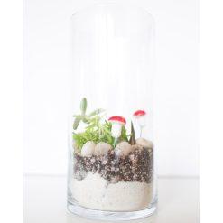 diy-tall-cylinder-terrarium-kit-square