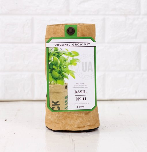 organic basil growing kit pop shop america