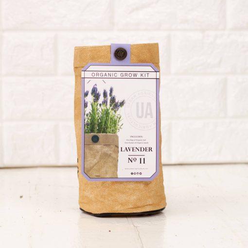 organic lavender herb growing gardening kit