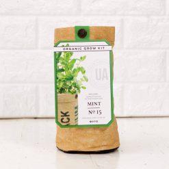 organic mint herb growing kit