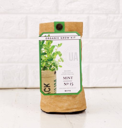 organic mint herb growing kit