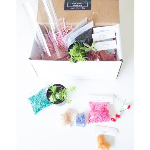 succulents-terrarium-kit-gardening-supplies-square