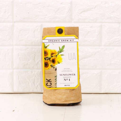 sunflower garden growing kit pop shop america