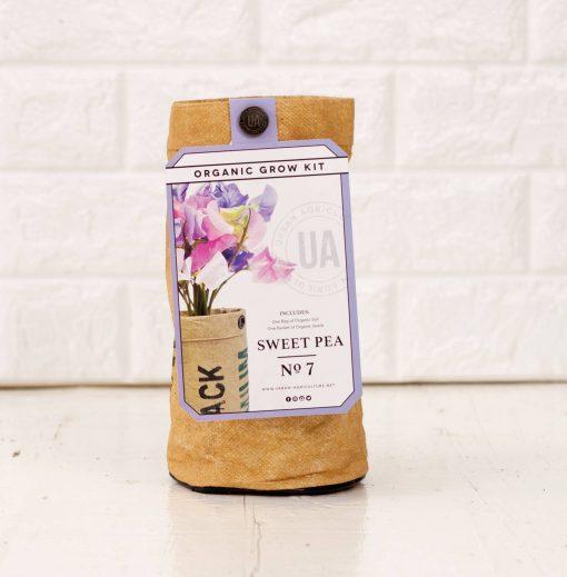 sweet pea flowers garden growing kit