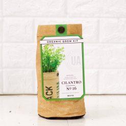 cilantro-herb-garden-growing-kit-diy-pop-shop-america_square