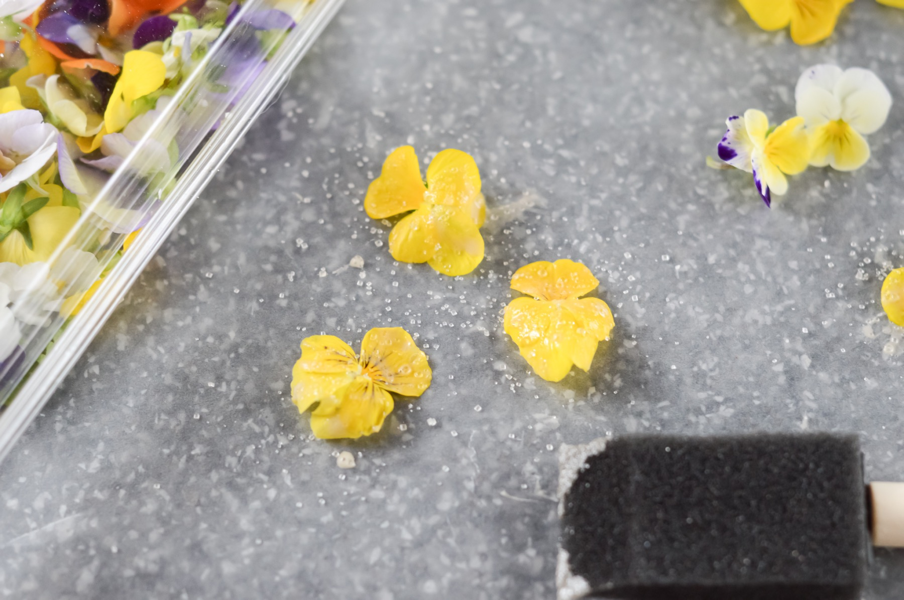 how to make candied edible flowers craft tutorial