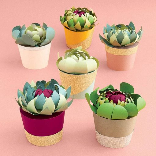 potted succulents paper flower making kit