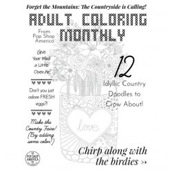 Country-Doodle-Adult-Coloring-Book-Cover-square
