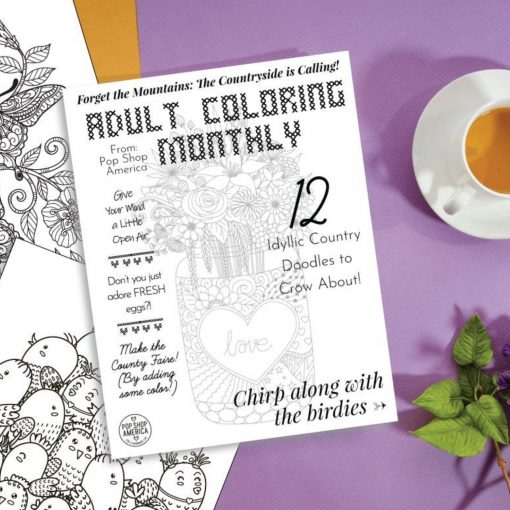 country-doodle-adult-coloring-monthly-sub-box-pop-shop-america-square