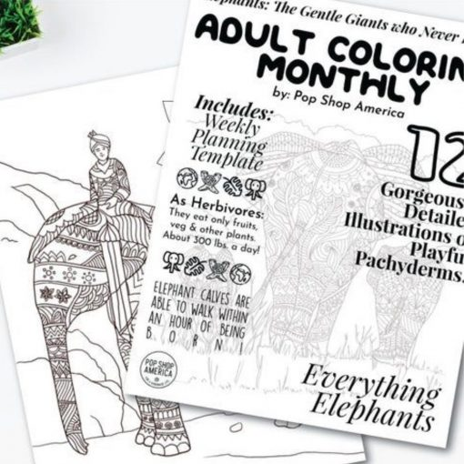 elephants-adult-coloring-book-square