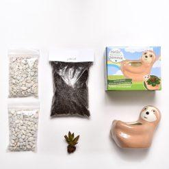 supplies inside sloth gardening terrarium kit