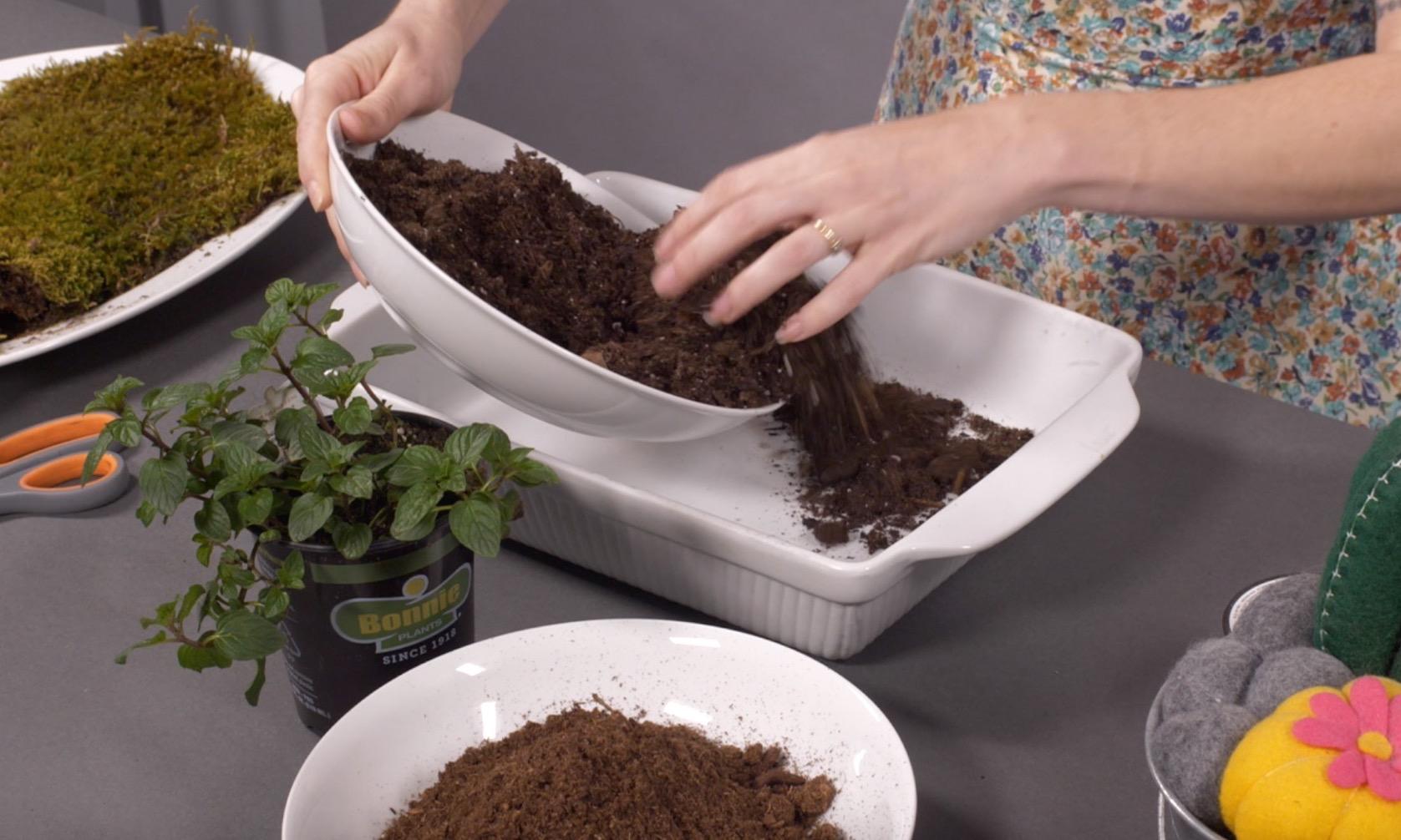mix together bonsai soil and peat moss to make a kokedama
