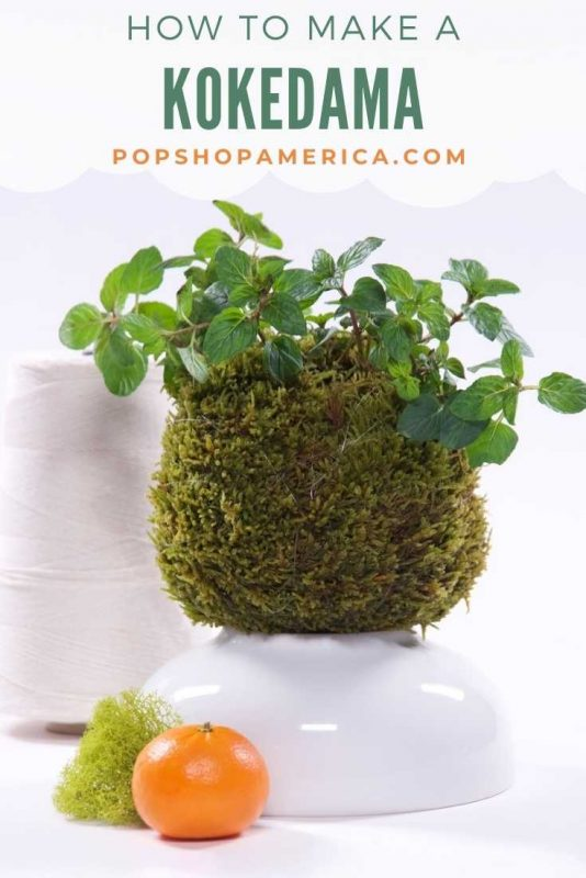 how to make a kokedama featured image