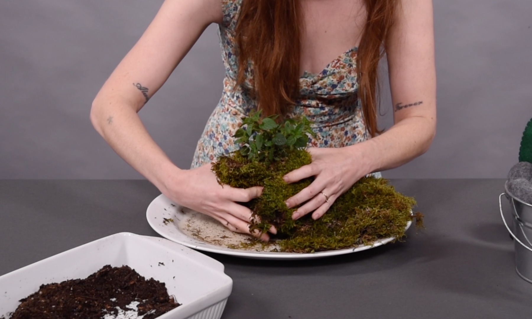 kokedama making instructions wrap the reindeer moss around the plant