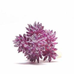 violet faux succulent pop shop america